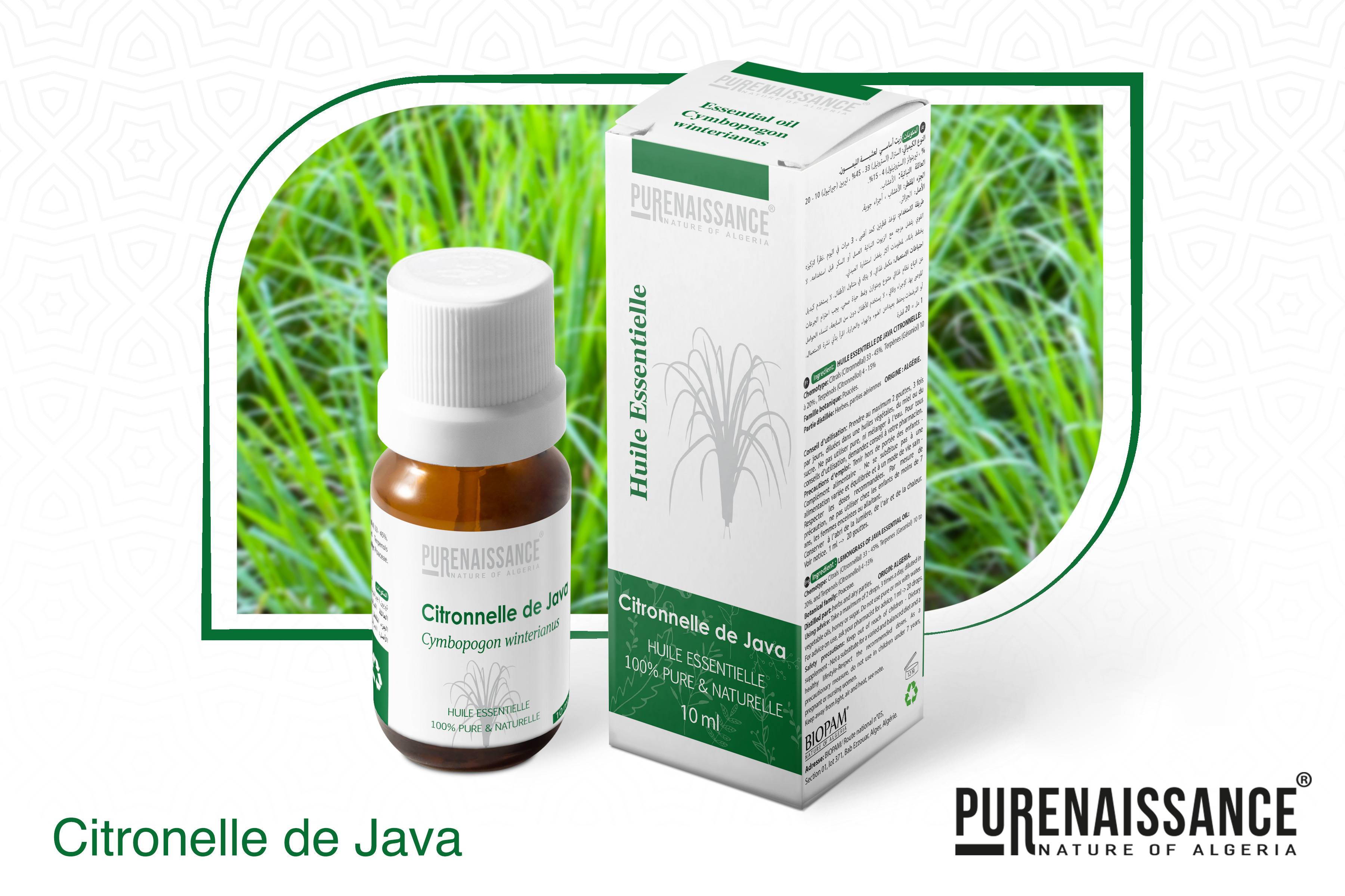 citronelle de java